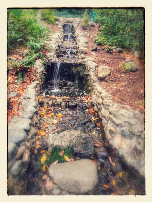 Lithia Park.