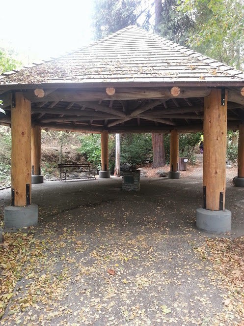 "This gazebo in Lithia Park will be a significant setting in ""Decaf For The Dead""."