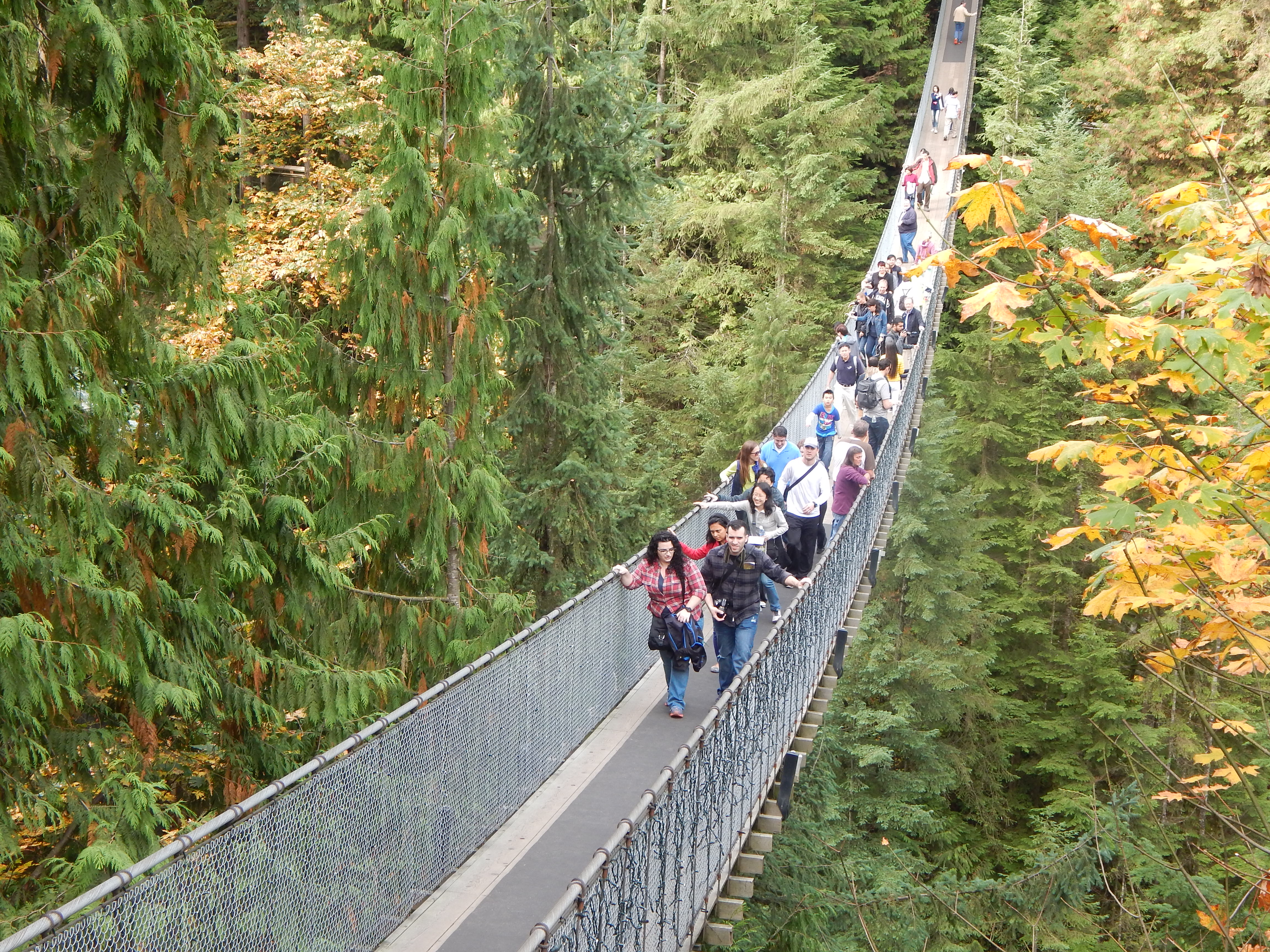 Capilano Suspension Bridge, VC - Sandy Lo