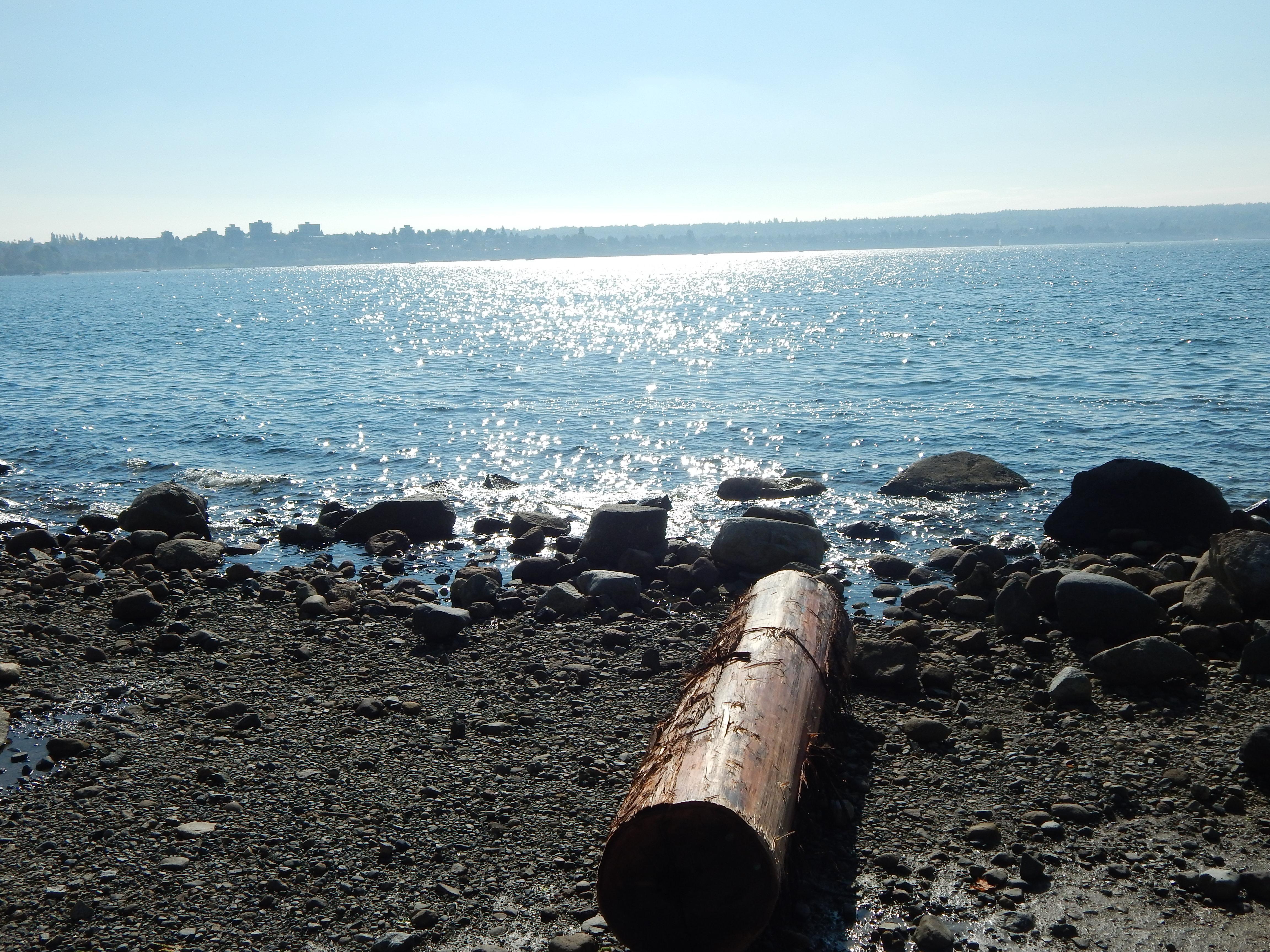 Vancouver - Sandy Lo